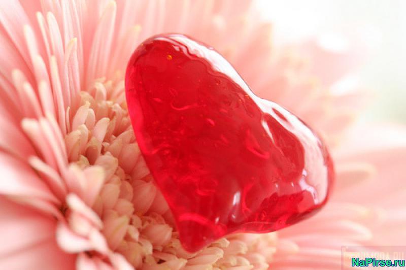 Сценарий ко дню Святого Валентина