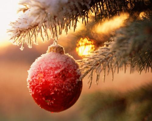 Сценарий Новогоднего представления вокруг Елки